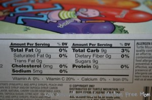 Allergen Free Popsicles3