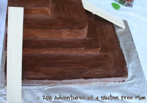 Gluten-Free Dye-Free Jungle Junction Birthday Cake11