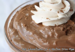 Gluten-Free Dairy-Free Chocolate Pudding0