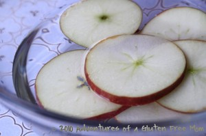 Lunchbox Apple Slices1