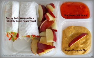 Spring Roll Lunch Box