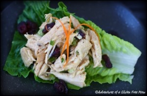 Dairy-Free Egg-Free Chicken Salad