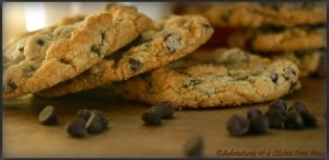 Gluten-Free, Dairy-Free, Egg-Free Toll House Chocolate Chip Cookies
