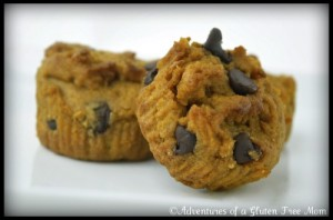 Marion's Smart Delights Gluten-Free Vegan Pumpkin Chocolate Chip Muffins