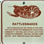 Weekly Menu Plan, Rattlesnake Huntin' (and a Giveaway!)