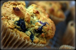 Blueberry Muffins*