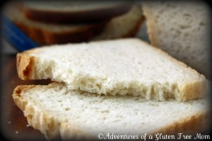 Egg-Free King Arthur GF Bread4