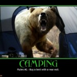 camping-bear-demotivational-posters-1293516950